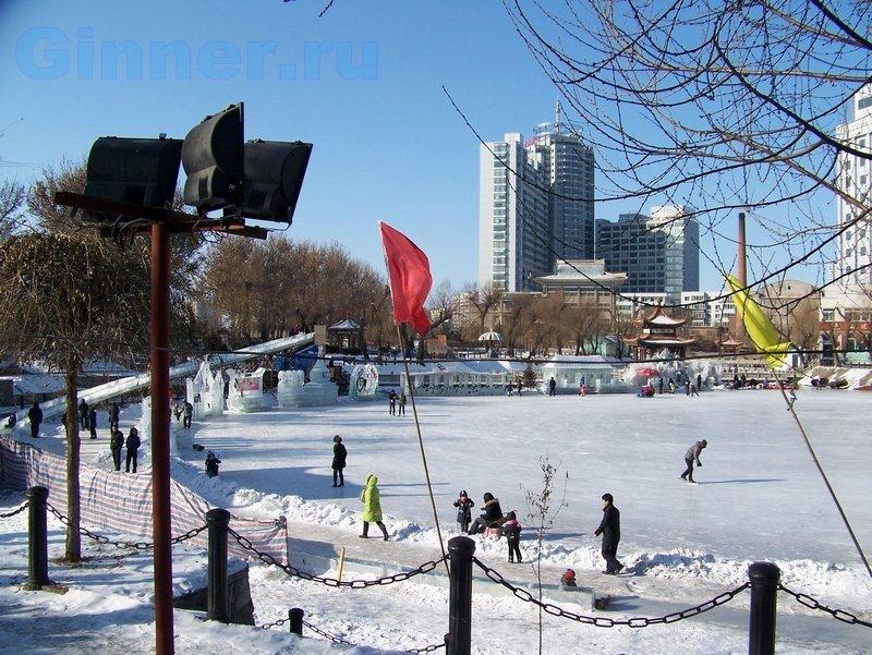 ny2010-12