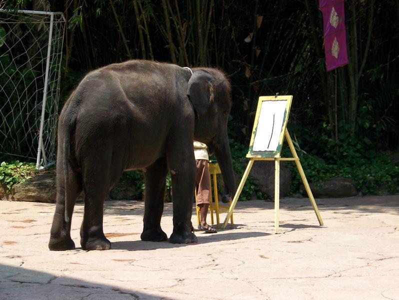 slon05