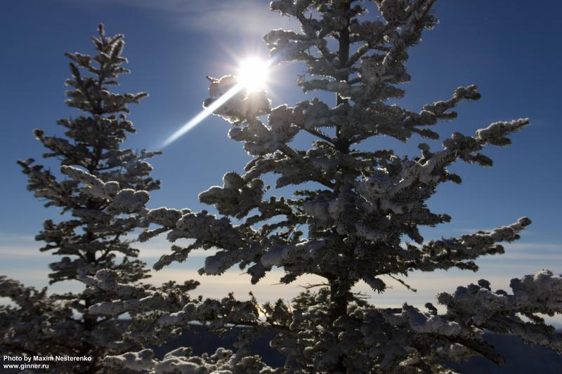 sneg-falaza02