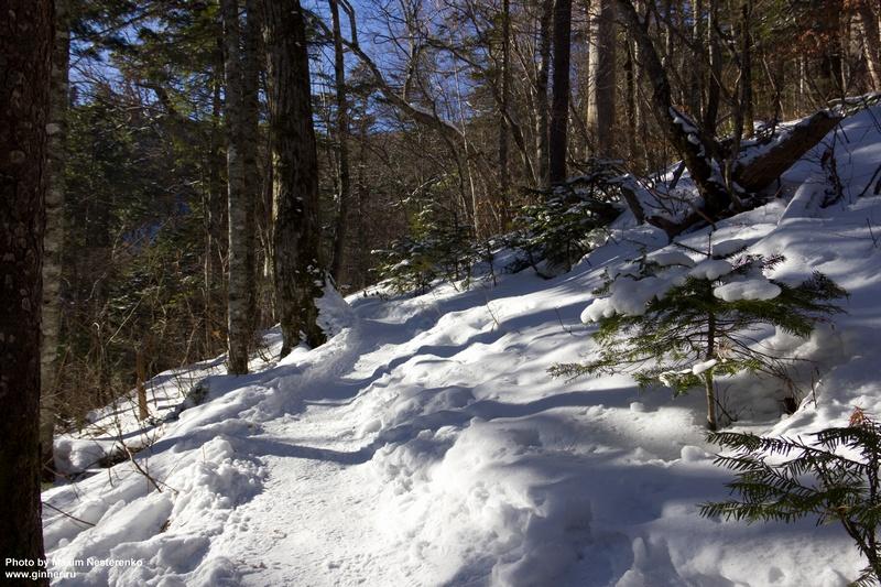 winter-falaza03