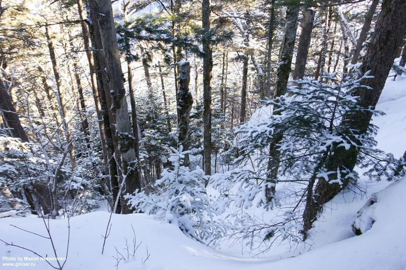 winter-falaza09