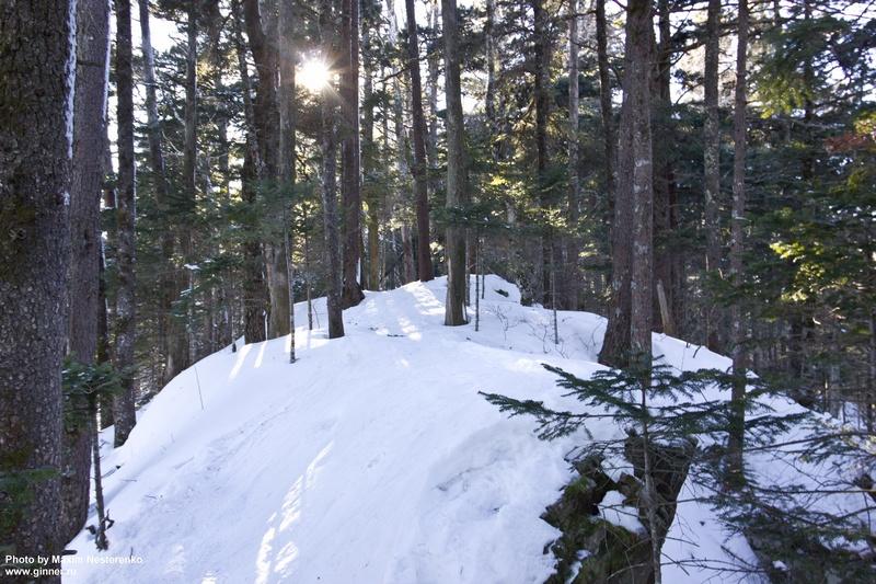 winter-falaza10