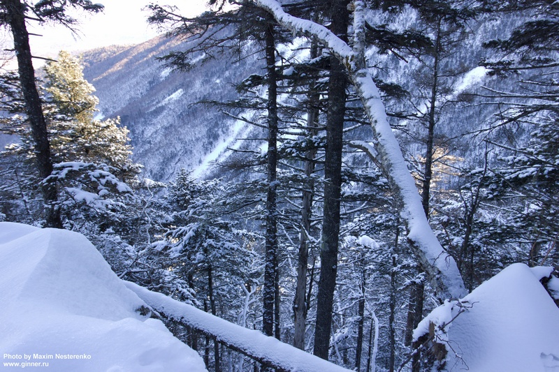 winter-falaza12