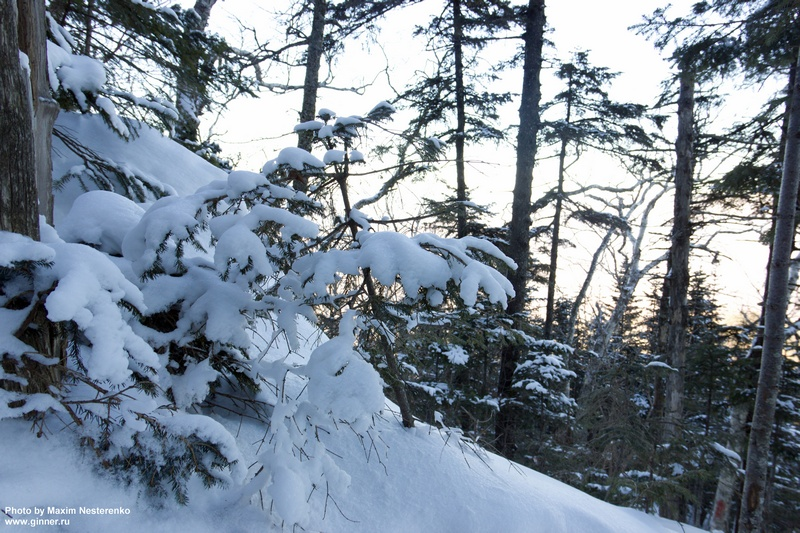 winter-falaza13
