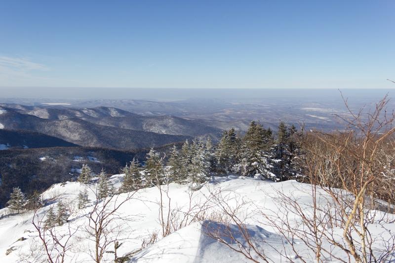 winter-falaza21