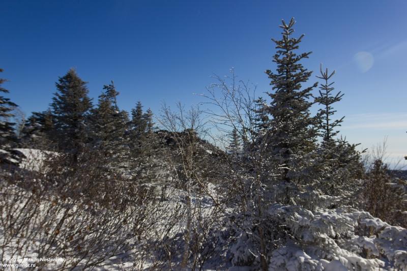winter-falaza23