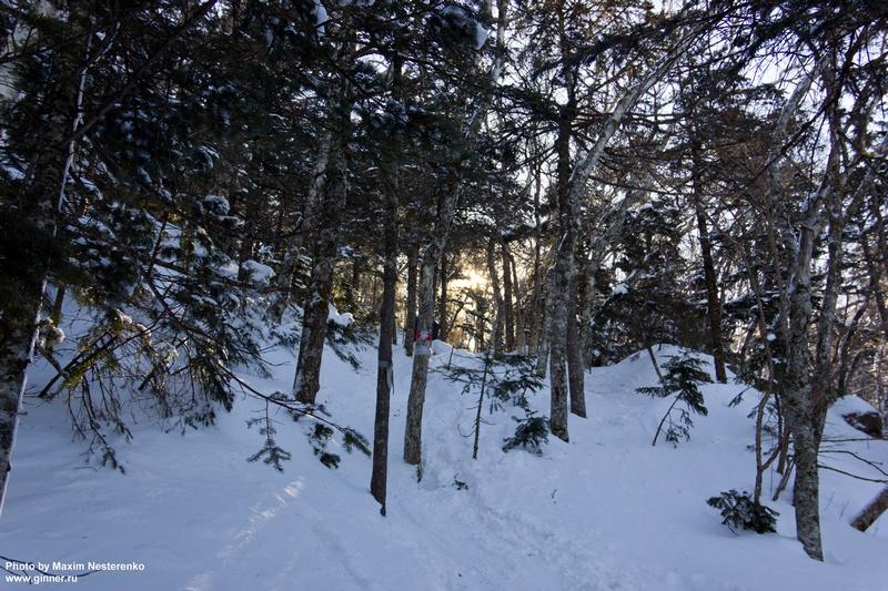 winter-falaza25