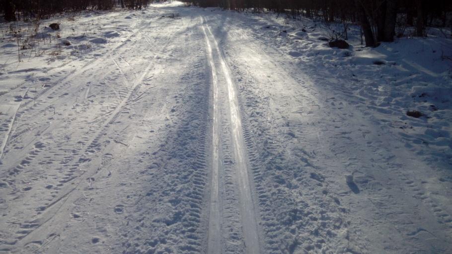 Лыжня в С-Нежной